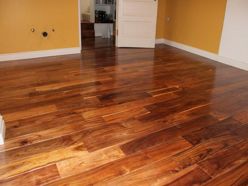 Hardwood Floors Types Modern House